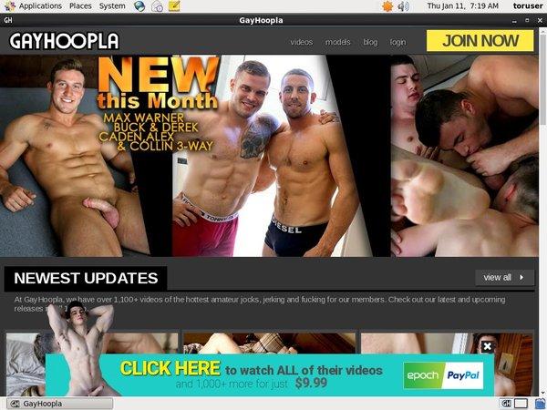 New Gayhoopla Discount Code